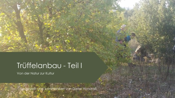 Trüffelanbau in Deutschland - statt Lehrbuch ein Lehrfilm