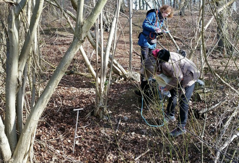 Trüffelsuche - die Vorbereiter für den Trüffelanbau