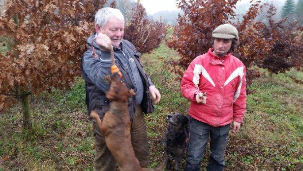 Erste Trüffeln auf Plantage in Baden-Würtemberg